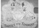 44-8810-target-for-tonight-nose-panel