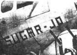 unknown-sugar-jo